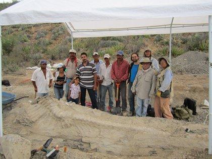 La investigación comenzó en 2013 tras el hallazgo de los restos de una cola de dinosaurio en el estado de Coahuila (Foto: Cortesía INAH)