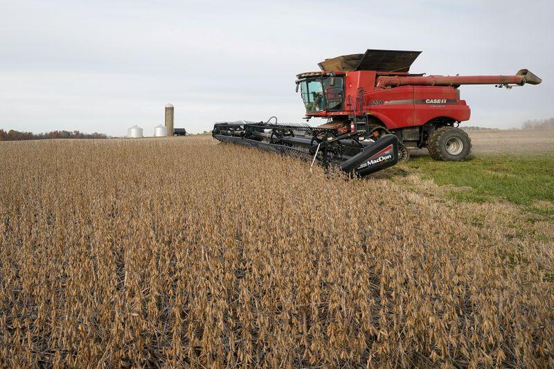 ¿Cuál es el plan para aprovechar el precio record de los commodities de origen agrícola? (REUTERS/Bryan Woolston)