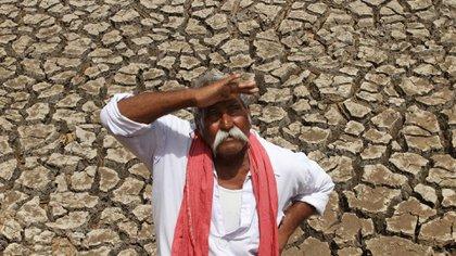 El primer estudio que conecta los suicidios con el cambio climático hizo foco en la India (AP Photo/Ajit Solanki)