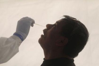 A través de una misma muestra, se podrá determinar a que virus responde la infección (Foto: Reuters / Henry Romero)