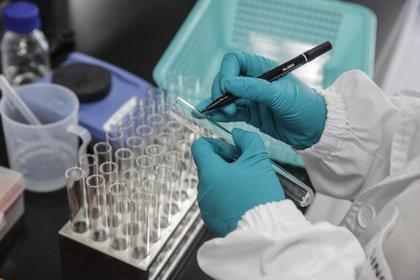 Según explican los científicos, el coronavirus está mutando constantemente (Efe)