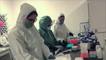 El subsecretario Hugo López-Gatell dijo que las pruebas serológicas no son recomendadas por la Secretaría de Salud (Foto: Especial)