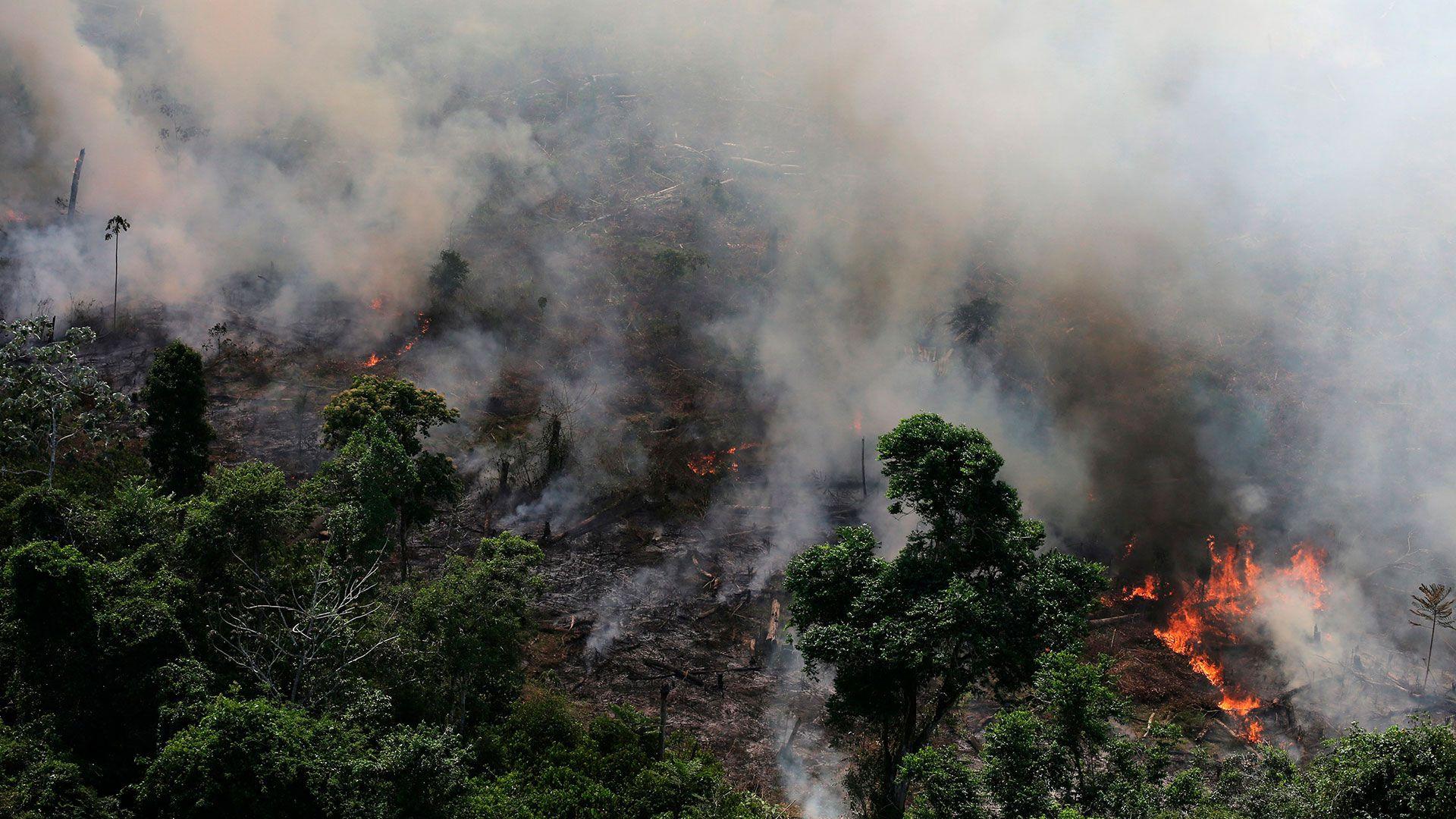 La magnitud del incendio en la Amazonia ha aumentado la preocupación alrededor del mundo, debido a que es uno de los principales pulmones del planeta (Foto: Archivo)