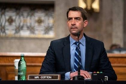 El senador de Arkansas, Tom Cotton. Anna Moneymaker/Pool via REUTERS