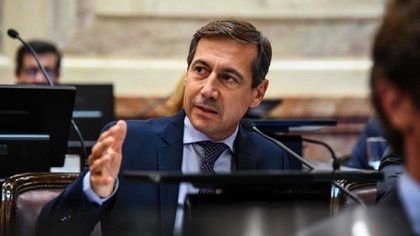 El senador Luis Naidenoff