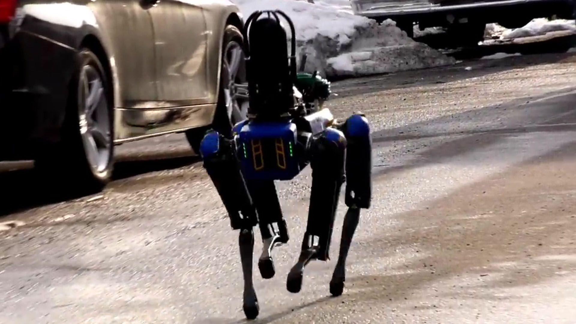 robo dog policia de nueva york