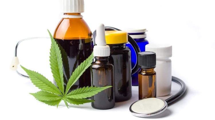 Muchos estudios recientes buscan ahondar en los usos de ciertas moléculas de la planta de cannabis en las patologías neurodegenerativas