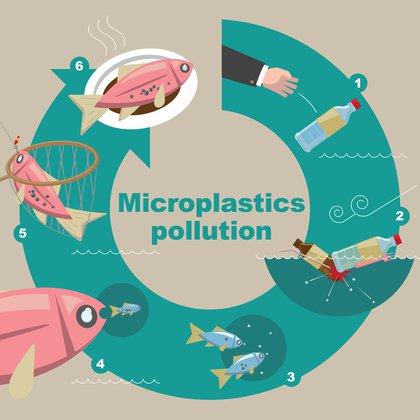 Evolución de la polución que producen los microplásticos (Shutterstock)