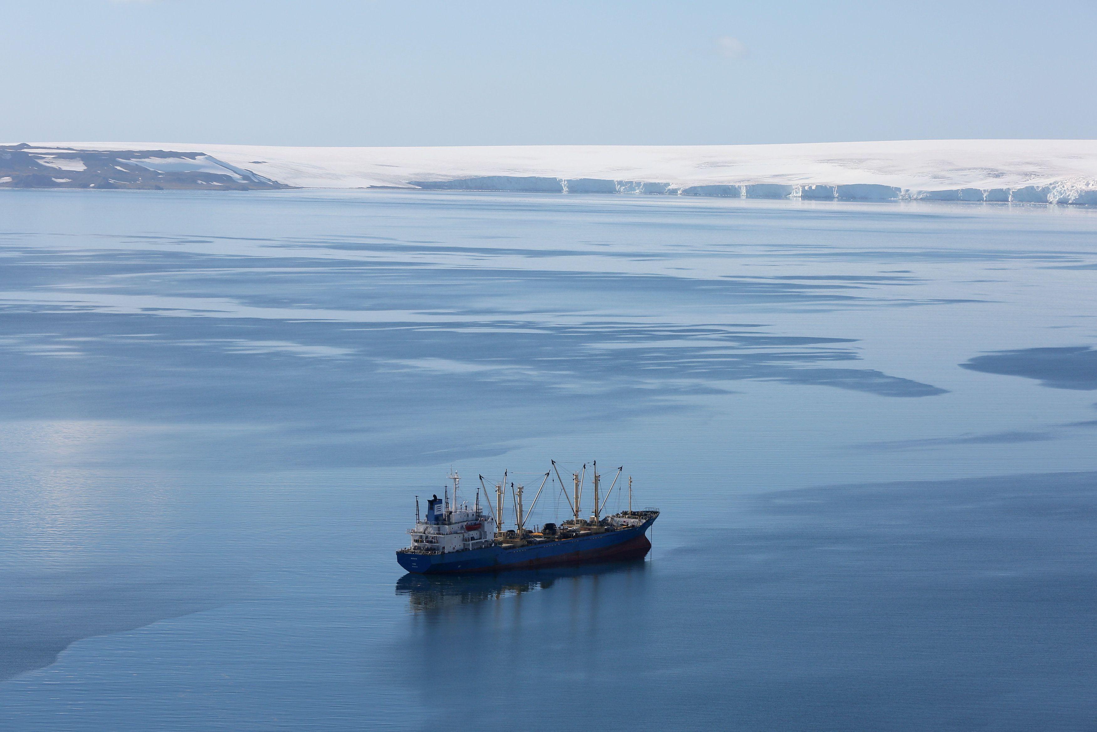 las pesquerías de krill en el Océano Austral han estado creciendo durante décadas para satisfacer la creciente demanda de suplementos dietéticos Omega-3 y harina de pescado (REUTERS/Alexandre Meneghini/File Photo)