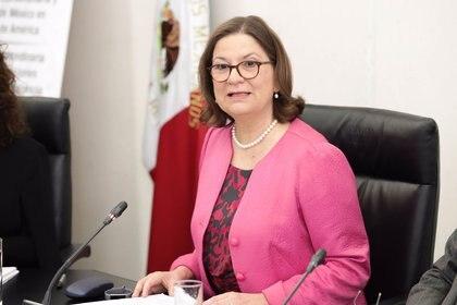 """Bárcena Coqui aseguró que """"México no interviene en el proceso electoral ni se posiciona a favor de ningún candidato""""."""