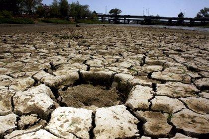 Las condiciones más criticas de sequía están en 10 localidades de Sonora y Chihuahua (Foto: Cuartoscuro)