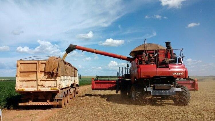En el mundo agropecuario local, los camiones son el único medio de transporte para sacar la producción de campo y casi el único para entregarla en acopios y puertos