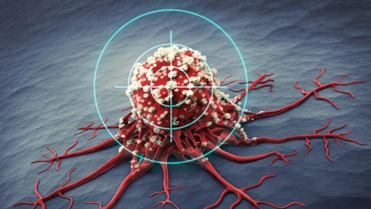 Es un tratamiento que acciona en forma dirigida sobre blancos moleculares específicos localizados en la superficie o el interior de las células tumorales,