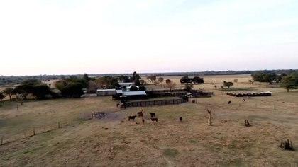 Impacto del Incendio en el campo de Oscar Muchutti, en la provincia de Chaco