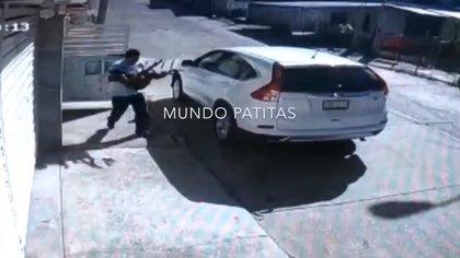 Las cámaras captaron al dueño con uno de los canes envenenados en sus brazos. Corriendo, los introdujo en el maletero de su auto para trasladarlos al veterinario (Foto: Captura de pantalla @MundoPatitas)