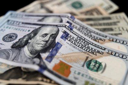 El dólar paralelo alcanzó un récord de $195 el 23 de octubre. (EFE)
