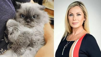 Leticia Calderón no pudo ocultar su rechazo a los gatos y algunas personas le hicieron saber lo que piensan al respecto (Foto: Especial)