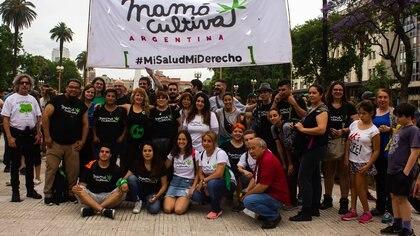 """Mamá Cultiva Argentina le pide al futuro presidente Alberto Fernández que resuelva la """"emergencia"""" del acceso al cannabis y la legalidad del autocultivo"""