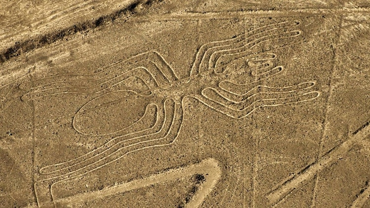 Image result for lineas de nazca