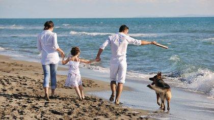 Los perros ya no podrán pasear con la familia (iStock)