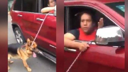 """El hombre sacó a """"pasear"""" a su perro a bordo de su vehículo (Foto: Captura de pantalla)"""