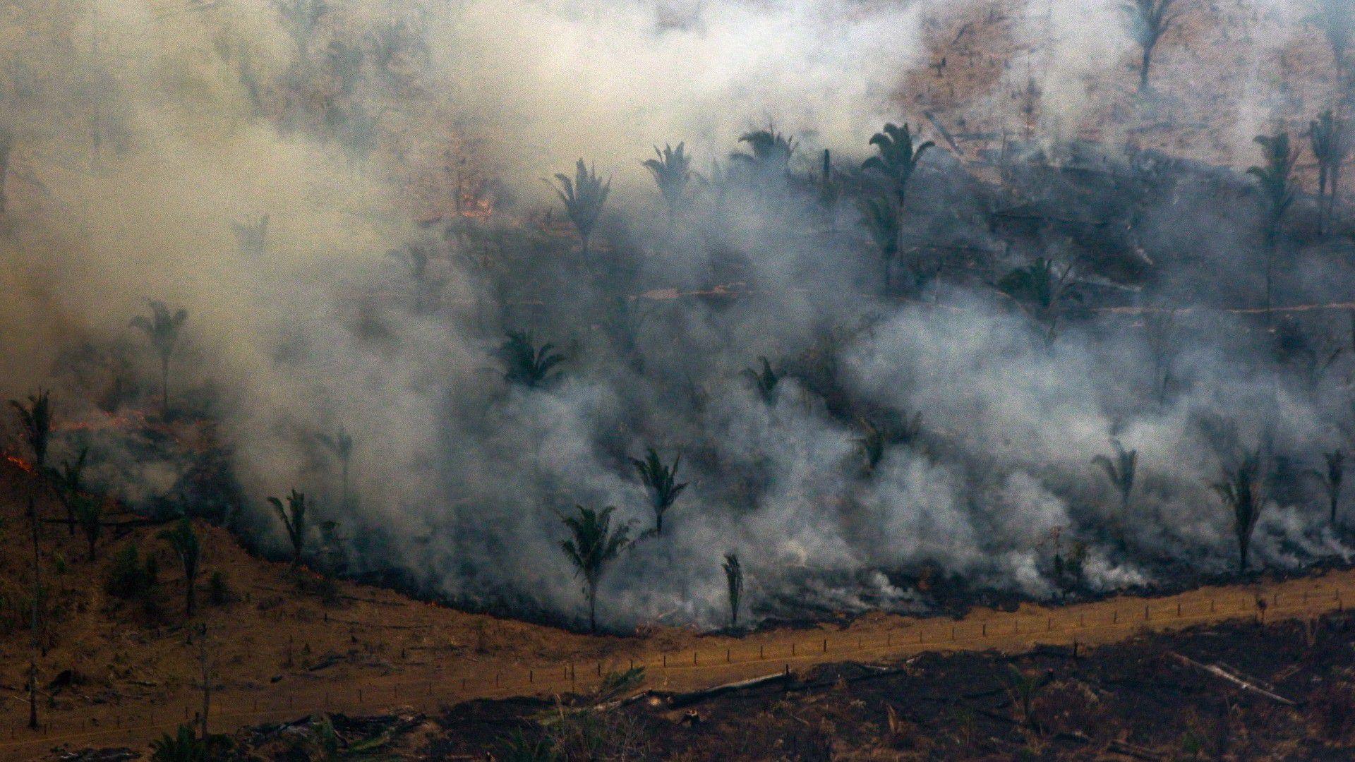 Vista aérea de los incendios en Boca do Acre, estado de Amazonas (AFP)