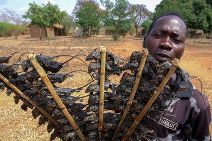 Un hombre vende ratones en Manjawira a lo largo de la carretera Lilongwe-Blantyre en el distrito de Ntcheu, al este de Malawi, el 24 de agosto de 2020 (AFP)