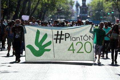 Activistas durante una marcha por la regulación en México, con el símbolo 420 (GALO CAÑAS/CUARTOSCURO)