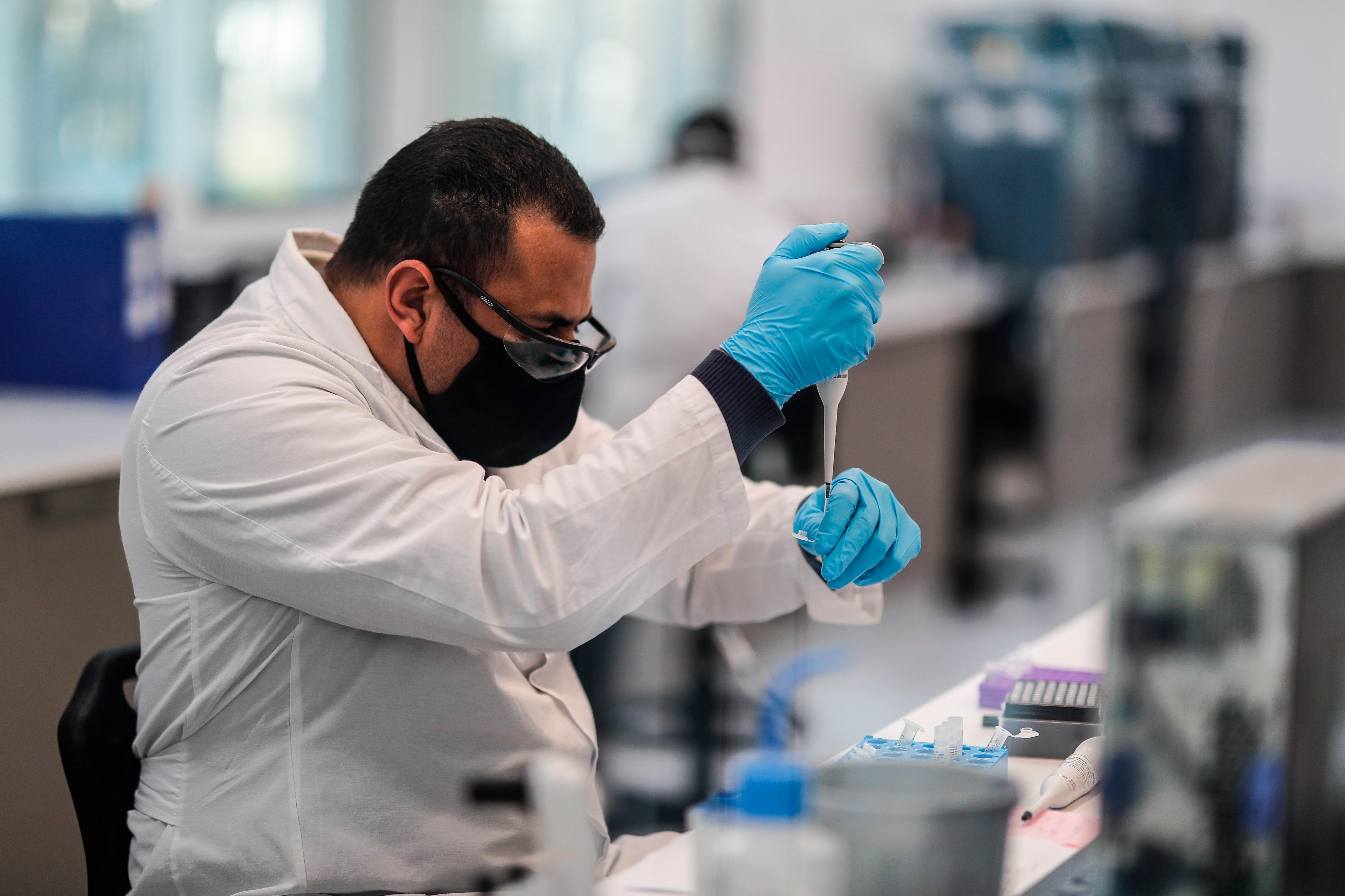 Existe una fuerte evidencia de que el abuso crónico de etanol se asocia con una mayor morbilidad y mortalidad, inmunosupresión y una mayor susceptibilidad a infecciones bacterianas y virales (EFE/Juan Ignacio Roncoroni/Archivo)