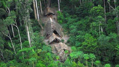 Foto de archivo: Tribu indígena del Amazonas brasileño, aislada y sin contacto con el resto de las poblaciones vecinas (AP)