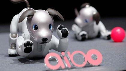 """Su nombre es Aibo y se trata de una mascota robot especialmente diseñada para interactuar con los seres humanos, """"casi"""" como un perro real. (Sony)"""