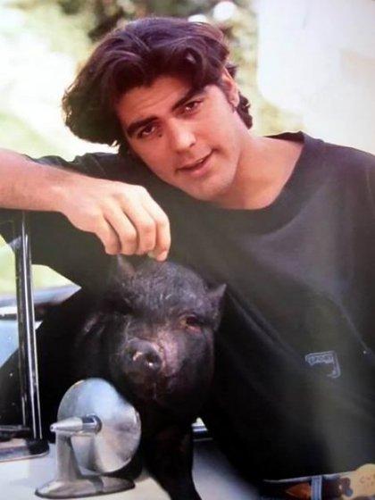 Max llegó a pesar 130 kilos para asombro de los veterinarios