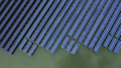 Una granja de paneles solares en China. (Qilai Shen/Bloomberg)