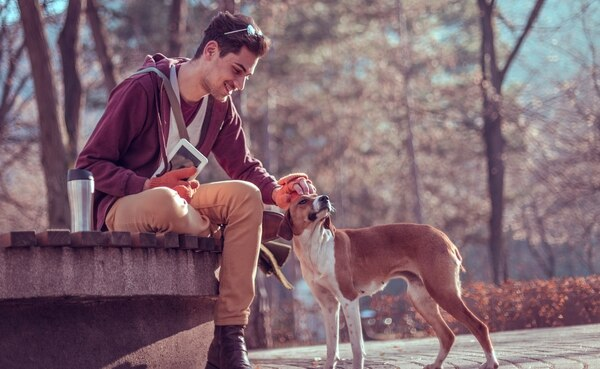 Son muchos los destinos que optaron por la tendencia pet friendly (Getty Images)