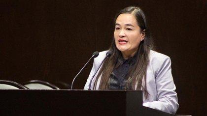 """La coordinadora de los diputados del PRD advirtió que si AMLO sigue con """"intromisiones"""" en las elecciones de 2021, interpondrán denuncias (Foto: Cortesía PRD)"""