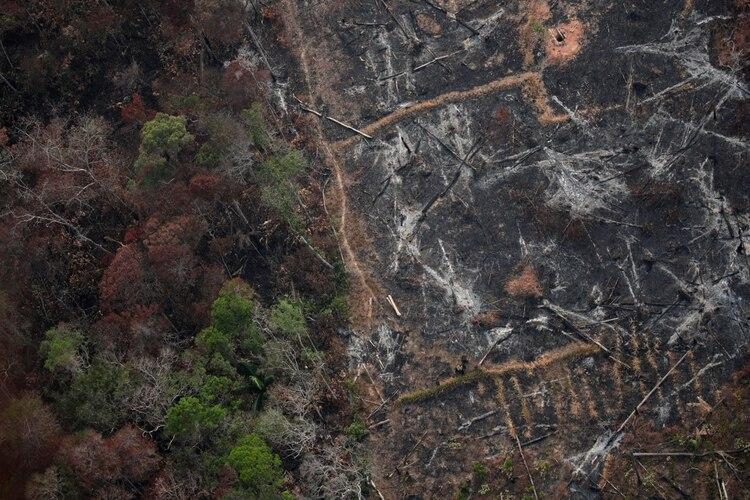 Vista aérea de una zona deforestada del Amazonas en Porto Velho, en el estado de Rondonia, Brasil (REUTERS/Ueslei Marcelino)