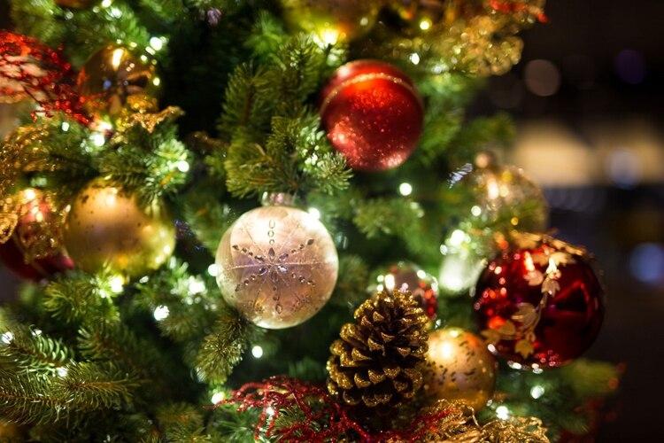 El 8 de diciembre coincide con el Día de la Virgen Inmaculada Concepción (iStock)