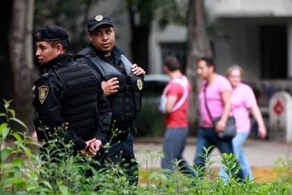 El cateo donde se encontraron los más de 800 kilos de cocaína también se aseguraron 11 armas largas, cuatro armas cortas, tres vehículos, y se logró la detención de dos personas (Foto: Policía de México)