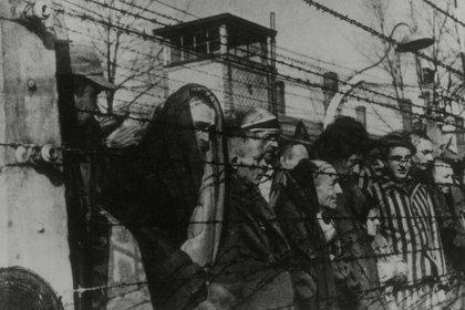 Unas 36 páginas de Facebook, con más de 366.000 usuarios, ofrecen contenidos que niegan la persecución sistemática, promovida por el estado nazi, y el asesinato de seis millones de judíos en campos de concentración y exterminio. (Northcliffe Collection/ANL/Shutterstock)