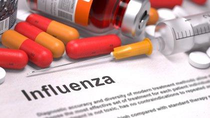 La gripe continúa siendo una de las mayores amenazas para la salud pública mundial (Shutterstock)