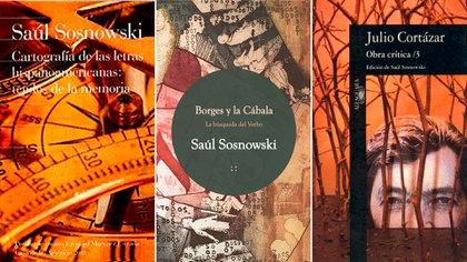 Otros títulos de Saúl Sosnowski