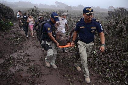 Agentes de la policía trasladan a un herido después de la erupción del Volcán de Fuego, en el pueblo de El Rodeo, departamento de Escuintla, a 35 km al sur de Ciudad de Guatemala el 3 de junio de 2018 (AFP)