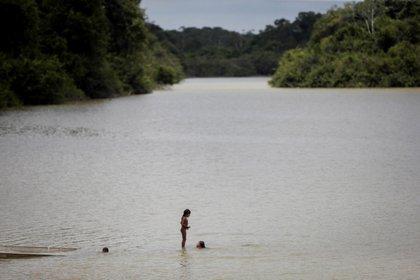 Niños indígenas de la etnia Xikrin en el río Bacajá, en la Amazonía brasileña. EFE/FERNANDO BIZERRA JR/ Archivo