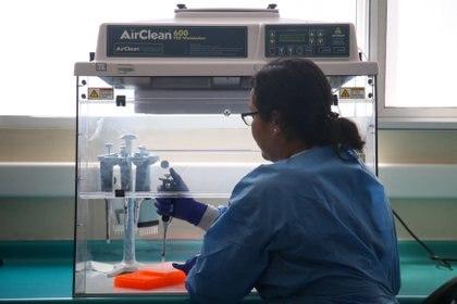 Especialistas realizan análisis de muestras en preparación para el estudio de posibles casos de coronavirus en el Instituto de Salud Pública de Chile (ISP), en Santiago (REUTERS/Edgard Garrido)