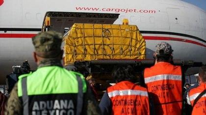 Qué países de América Latina recibieron dosis de Pfizer en los últimos siete días