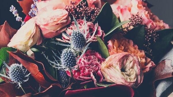 Tener flores en el hogar genera siempre un efecto positivo, alegran la vista y mejoran el estado anímico en general (Getty Images)
