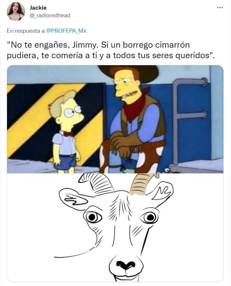 Memes borrego cimarrón, PROFEPA