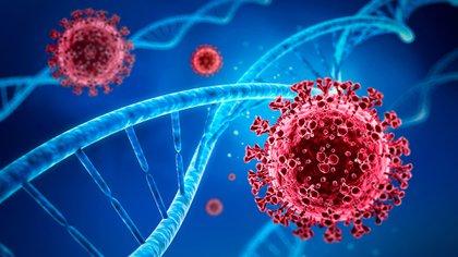 La mutación del SARS-CoV-2 conocida como S_E484, fue identificada en nuestro país. Es la misma que fue hallada en Sudáfrica y en Río de Janeiro