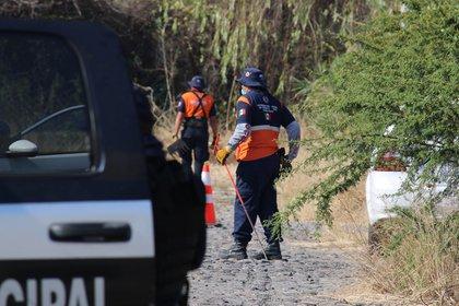 Miembros de  distintas corporaciones hallaron fosas clandestinas, en el municipio de Salvatierra (Foto: EFE/STR)