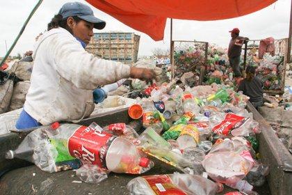 Esta disposición buscará la posibilidad de reducir en un 70% la contaminación por PET (Foto: Enrique Ordoñez/Cuartoscuro)
